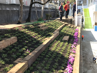 幼稚園の花壇リフォーム