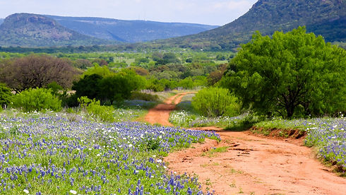 Hill_Country_Road_(106648873).jpeg