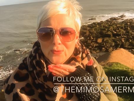 Follow Mimosa Mermaid on #Instagram