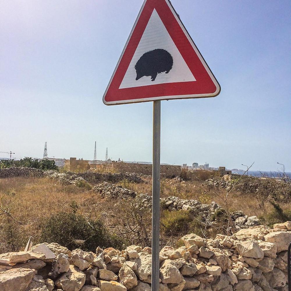 Hedgehog crossing Malta Three Cities Funny Road Sign