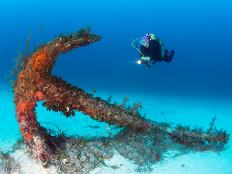 Claim €100 Euros towards the cost of scuba diving in Malta, Gozo and Comino this year!
