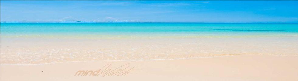 Home-Banner-Beach.jpg