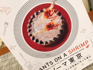 「ANTS ON A SHRINP noma in TOKYO」試写会