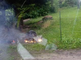 Kleinbrand in der Klosterfriedhofstraße (B1)