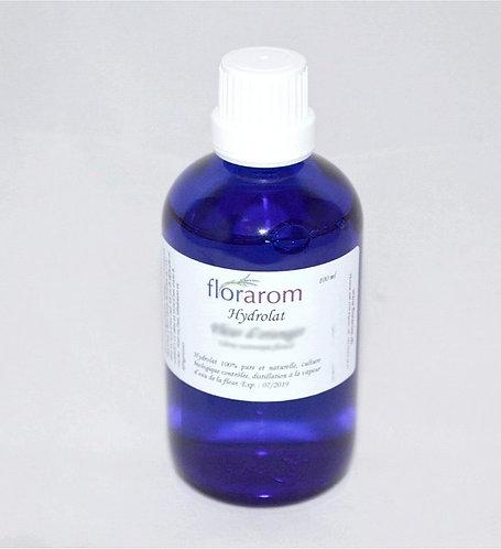 Hydrolat Thym thujanol bio
