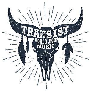 transist_graphic_b.jpg