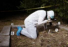 Investigador de la escena del crimen