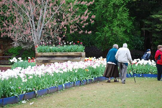 Couple in Tulip Garden