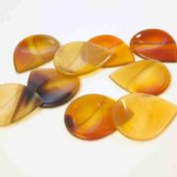 groove-tones-clear-horn-1-guitar-pick-[2