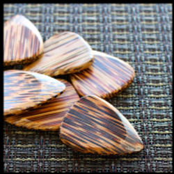 timber-tones-coconut-palm-1-guitar-pick-