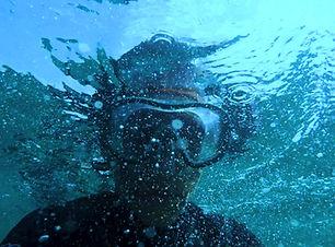 adventure-diver-diving-1274009.jpg