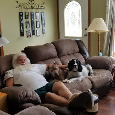 Lala fitting in nicely with her foster family.