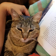 Grape enjoying a reading sess!