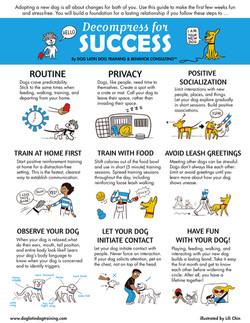 Decompress For Success & more
