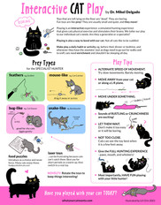 Interactive Cat Play