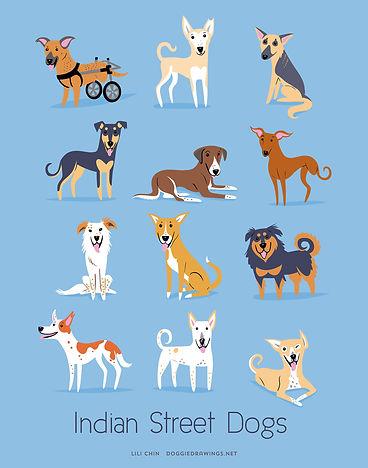 WEB-indianstreetdogs.jpg