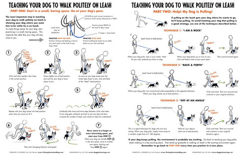 Polite Leash Walking