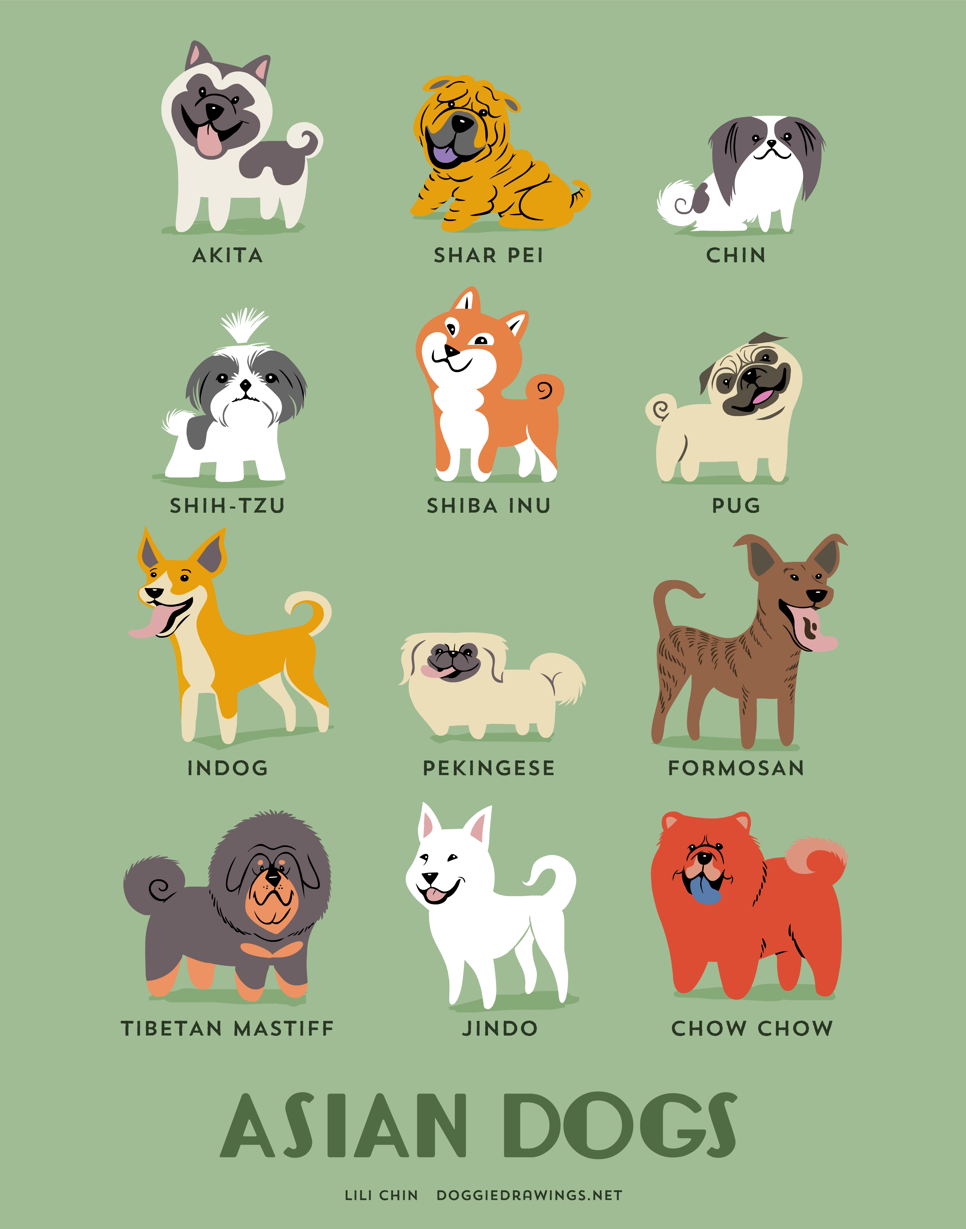 ASIAN DOGS