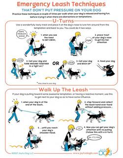 Emergency Leash Techniques