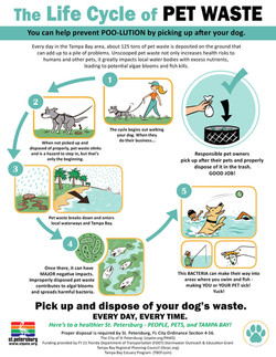 Life Cycle of Pet Waste