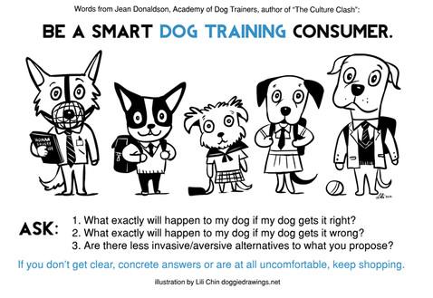 Smart Dog Training Consumer