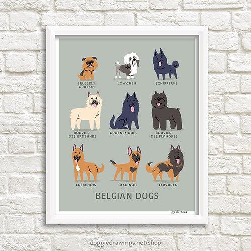 BELGIAN DOGS art print - New version
