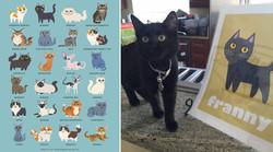 FRANNY - custom black kitten print