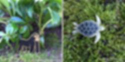 WLP gorilla turtle.jpg