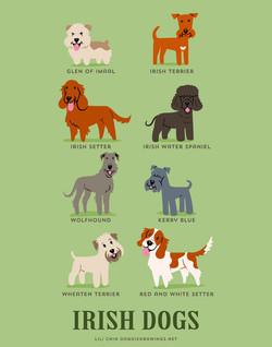 IRISH DOGS