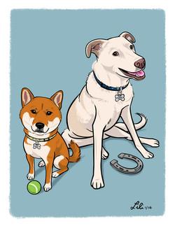 Mojo and Harper