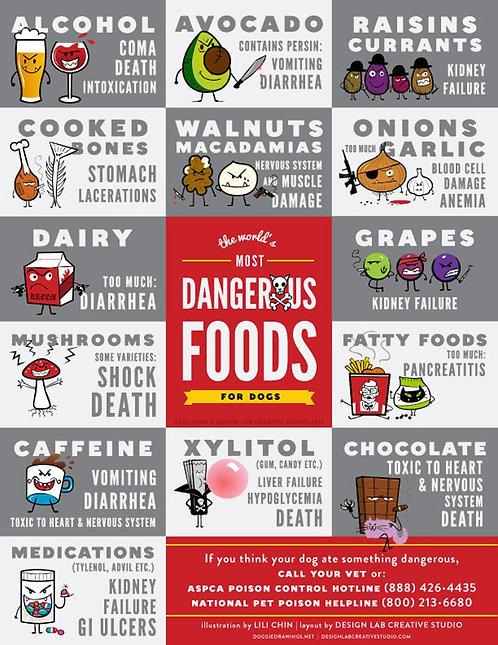 Dangerous Foods for Dogs Fridge Magnet (3)