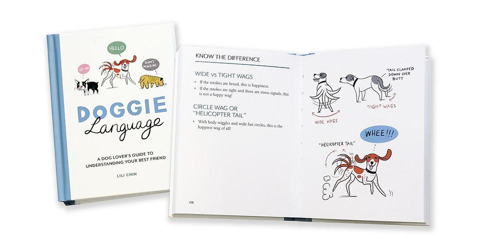Book-for-website.jpg