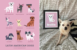 BELLA - Custom Chihuahua print