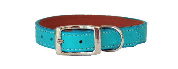 Pebble Straight Collar Teal