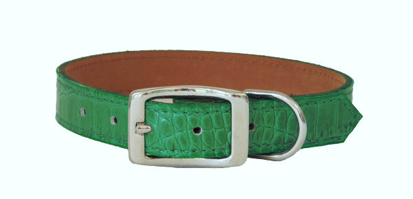 Croc Imprint Straight Collar Green