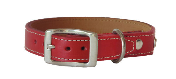 Monte Carlo Straight Collar Red