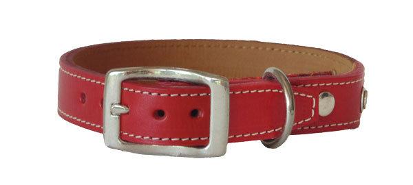 Monte Carlo Straight Collar Red