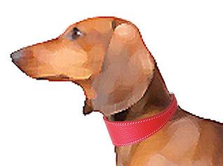 dasch-paint-red-peb.jpg