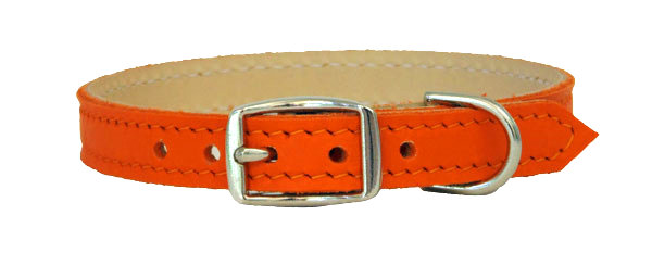 Luscious  Straight Collar Orange