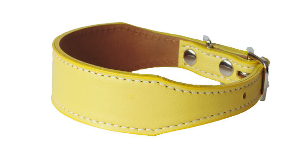 Luscious Tapered  Collar Sunbeam
