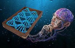 Quantenkünstler.jpg