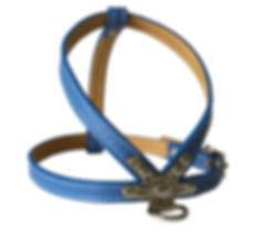 BACKYARD BLUE HARNESS.jpg