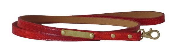 Snake Red Leash