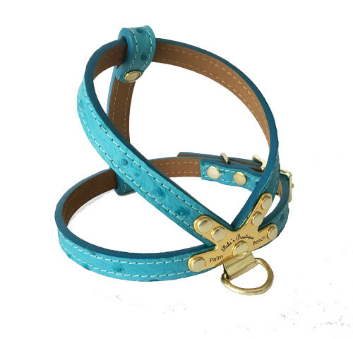 Ostrich Harness Turquoise