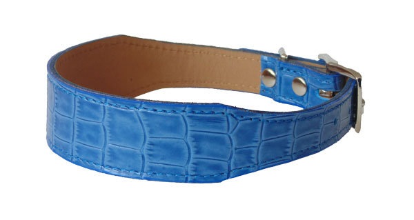 Croc Imprint Tapered Collar Blue