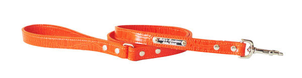 Croc Imprint Leash Orange