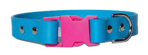 Splash Collar Blue Pink