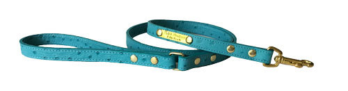 Ostrich Leash Turquoise