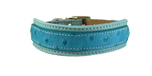 Ostrich Two Tone Turquoise