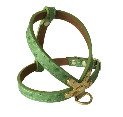 Ostrich Harness Lime